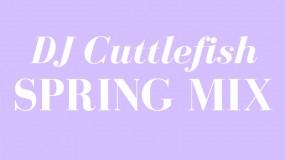 DJ Cuttlefish